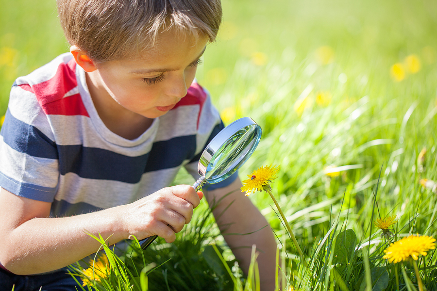 Home 6 – Boy with magnifying glass