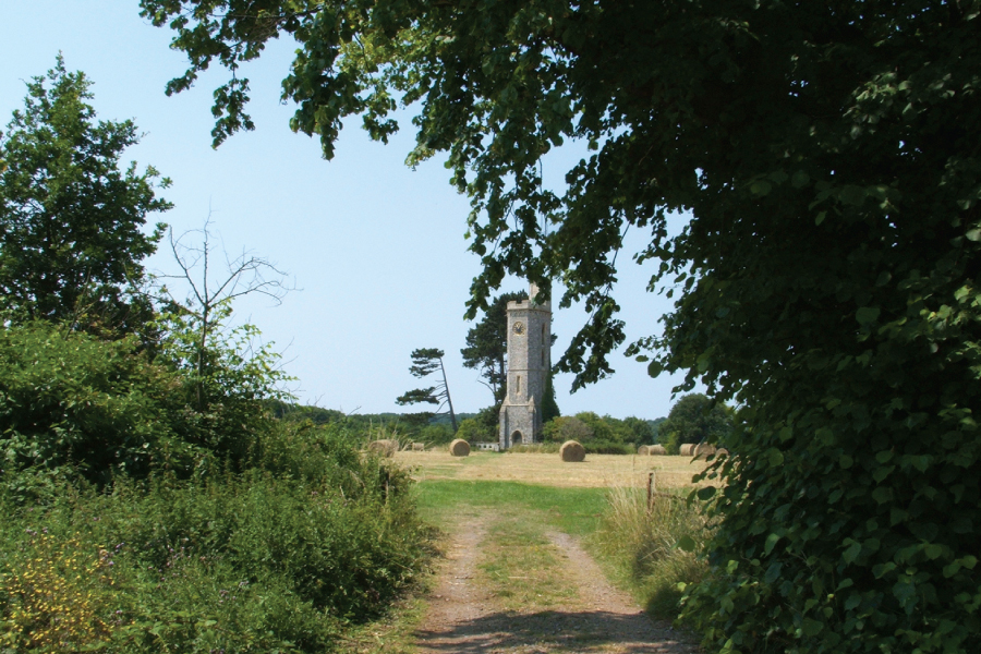 Home 9 – Wild Place Project tower meadow