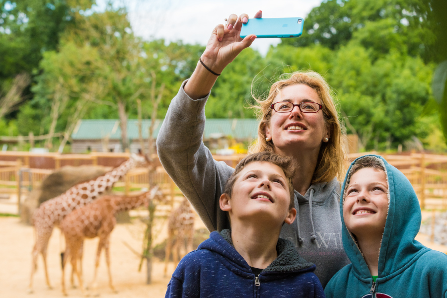 Experience 12 – Giraffe House